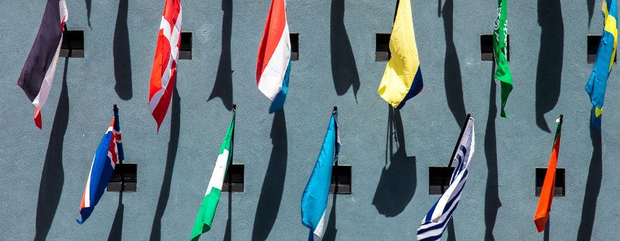 flags-on-wall
